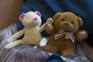Knuffelberen in een behandelkamer van MOC 't Kabouterhuis. Dit beeld hoort bij het verhaal over gedragsproblemen van de moeder van Olcugan.